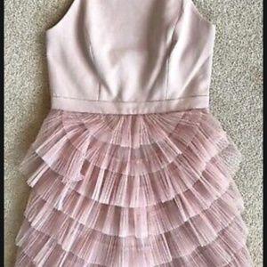 Blush Pink Pleated Dress